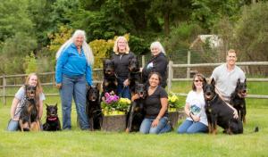 2017 06 18 Herding Trial Group Photo