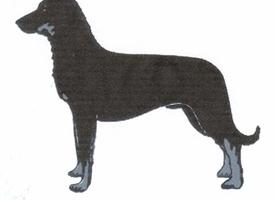 French Breed Club Logo