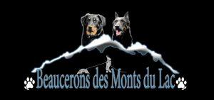 Des Monts Du Lac