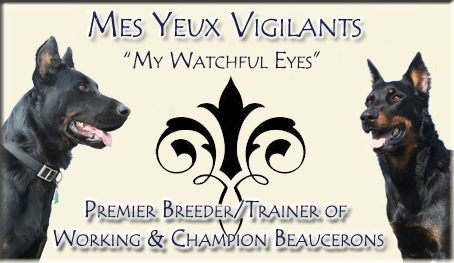 Mes Yeux Vigilants Beaucerons