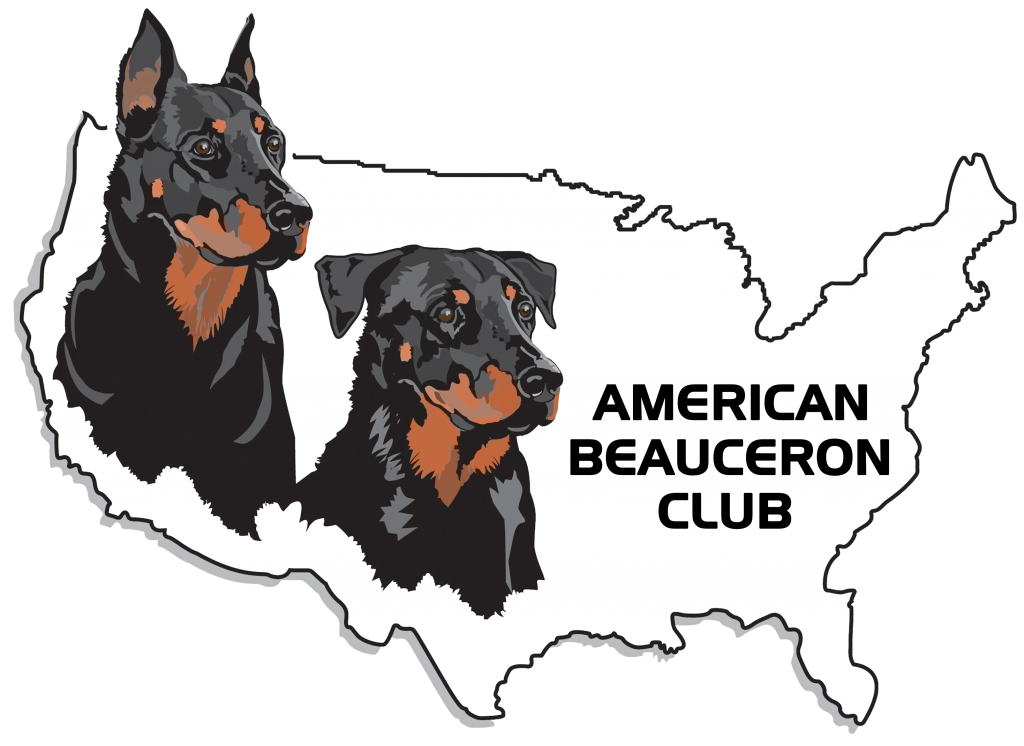 ABC Logo (Color)
